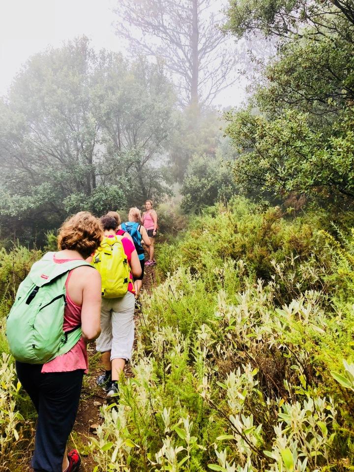 Hiking_vuortaylös