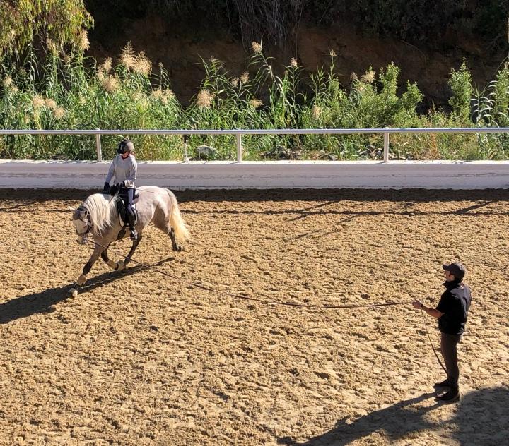Hevostelua